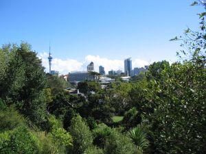 Auckland on a sunny day