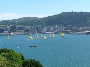 On a good day Wellington is a world beater