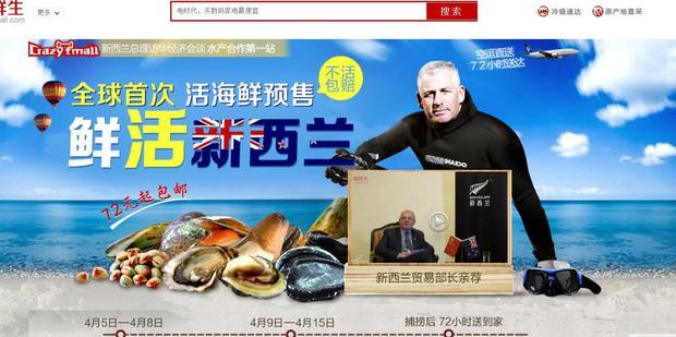 NZ China online mall ali baba
