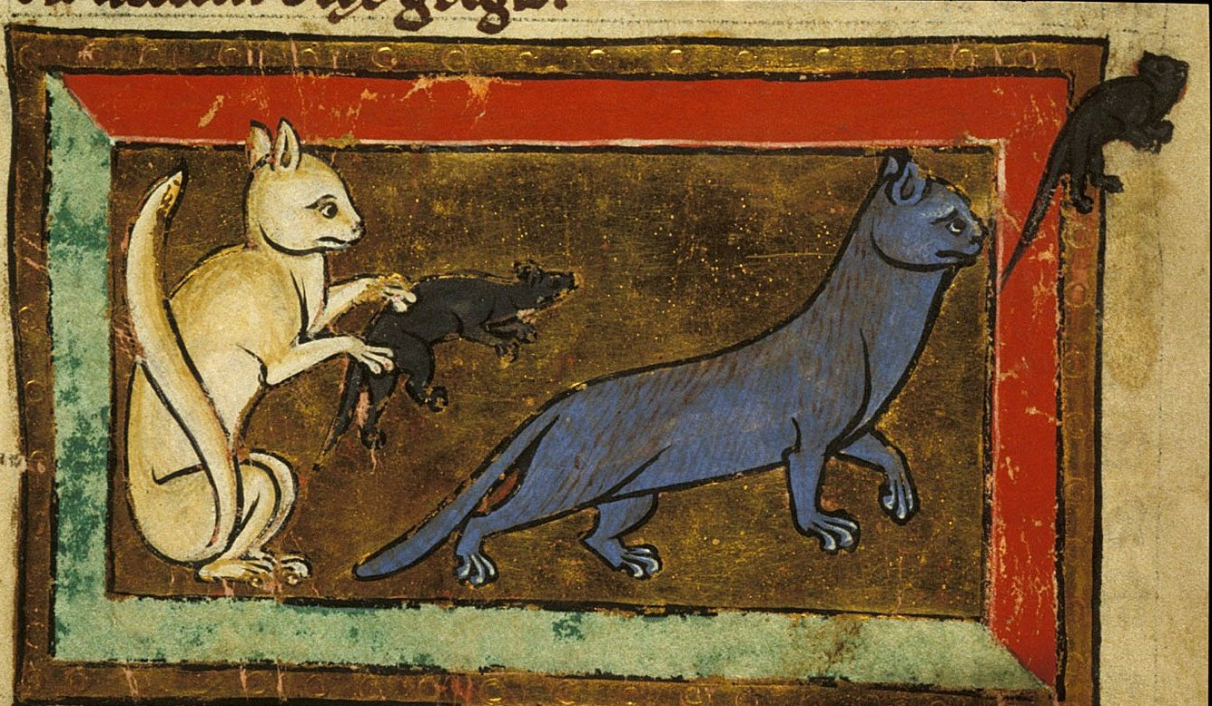 Medieval-Animal-Cat-and-rats